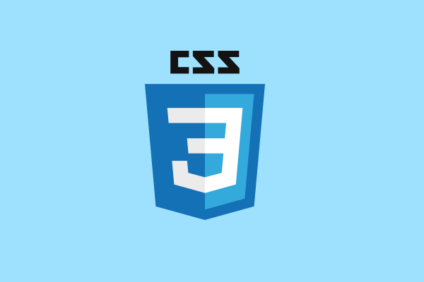 css3 training west delhi